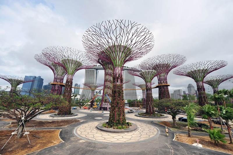 SINGAPORE-BAY-GARDEN