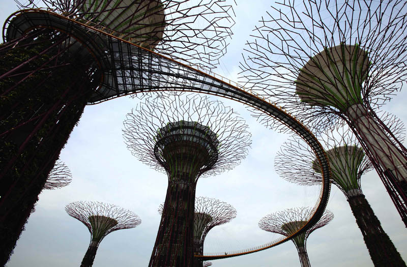 Journalists walk on the Supertree Aerial Walkway that links the giant concrete supertrees at Gardens by the Bay in Singapore